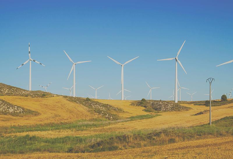 [Interview] Climat, énergie, biodiversité... Pourquoi les réponses aux défis mondiaux passent par les territoires ?